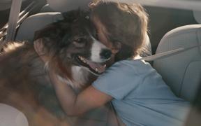 como-salir-viaje-con-mascotas-perro-niño